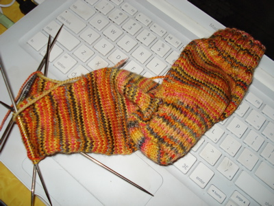 tiger-sock-2.jpg