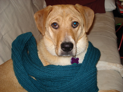 turquoise-ribbed-scarf.jpg