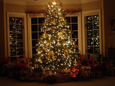 presents-under-the-tree.jpg