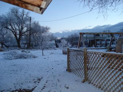 snowy-am.jpg