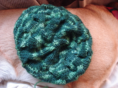 caebc18d1a008 Here s another shot of the Star Crossed Slouchy Beret