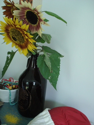 agingsunflowers