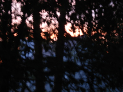 sunset2042