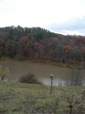 late fall six mile creek